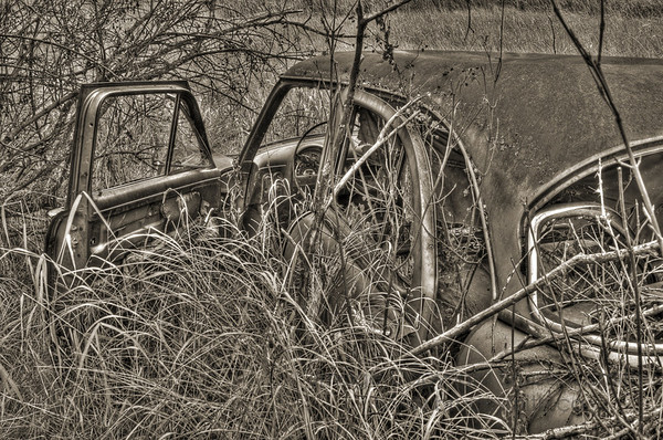 Monochrome detail of an abandoned Ford Customline rusting away in a field.