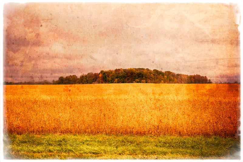 Salamonie-ACRES-Marshwalk-2.jpg