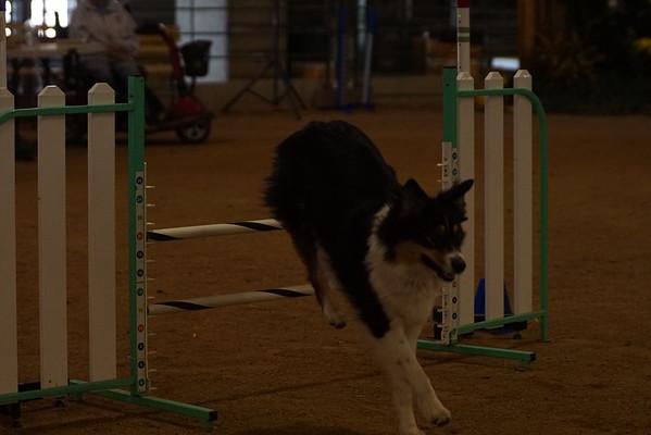 California State Fair SDTC TRACS 7/15