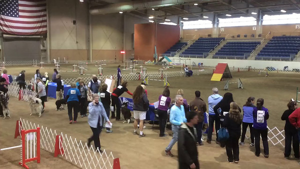 AKC Nationals 2014