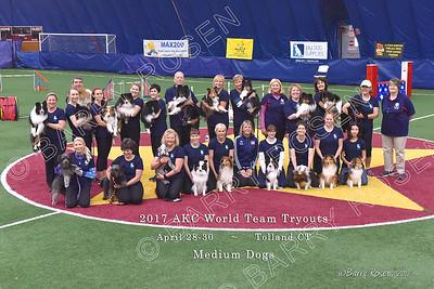 MEDIUM DOGS POD_0285