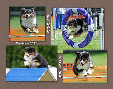 Ulrichsen 11x14 montage