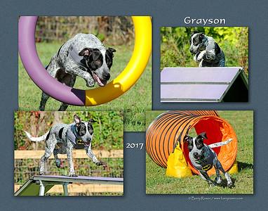 Todd 11x Grayson montage