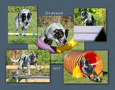 Todd 11x 5-photo Grayson montage