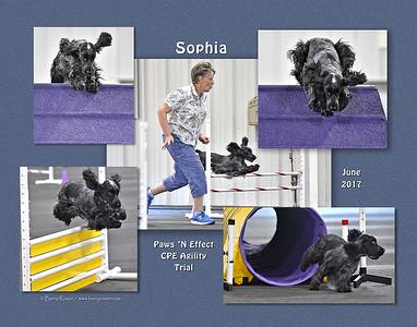 Strier 11x14 Sophia montage