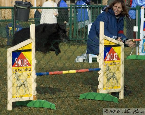 Ixelle onder de deskundige leiding van Anja bij het begin van de jumping veteranen