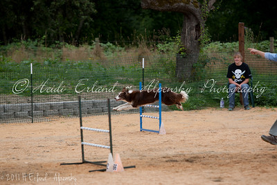 BLAST ASCA Jumpers - Open Round 1 - 08/05/11