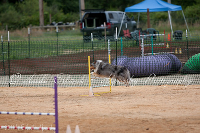 BLAST ASCA Jumpers - Open Round 1 - 08/06/11