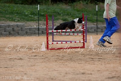 BLAST ASCA Jumpers - Open Round 2 - 08/06/11