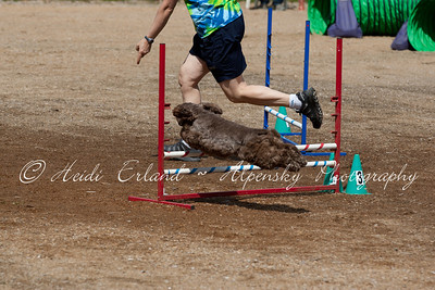 BLAST ASCA - Jumpers R2 Elite - Saturday 05/19/12