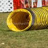 20130602dmkc-agility-00995