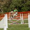 20130602dmkc-agility-00145