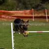 20130602dmkc-agility-00195