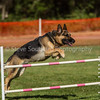 20130602dmkc-agility-00192