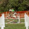 20130602dmkc-agility-00146