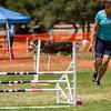 20130602dmkc-agility-02322