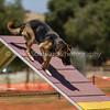 20130602dmkc-agility-02221