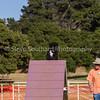 20130602dmkc-agility-03518