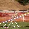 20130602dmkc-agility-03672