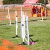 20130602dmkc-agility-03228