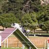 20130602dmkc-agility-03260