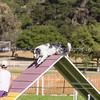20130602dmkc-agility-03262