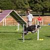 20130602dmkc-agility-03283