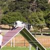 20130602dmkc-agility-03261