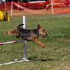 20130603dmkc-agility-01389