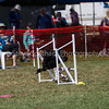 20130603dmkc-agility-01423