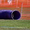 dmkcagilsun2012-0105