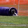 dmkcagilsun2012-0107