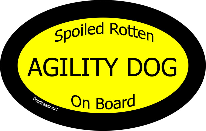 "Face it - you have a much-loved Spoiled Rotten Agility Dog On Board, right?  Then <a href=""http://www.cafepress.com/dogbreedz.428978875"" target=""_blank"">this car sticker</a> is meant for you!"