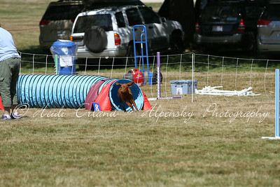 Jumpers Novice R2 - 07/14/14