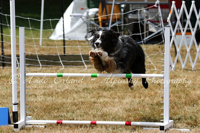 Jumpers Open R2 - 07/13/15