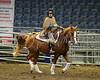 LI4_5998_Equine Extravaganza