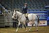 LI4_5991_Equine Extravaganza
