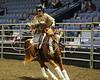 LI4_6004_Equine Extravaganza