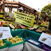 "Dia de Accion Europeo para ""Salvar las Abejas"""