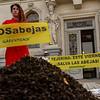 Acción para presionar al Gobierno que vote la prohibición de los neonicotinoides
