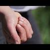 FarmErasmus Programme Teaser (Spanish Version)