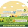 Infográfico: así envenenan los plaguicidas a las abejas