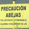 Abejitas Murcia Recursos