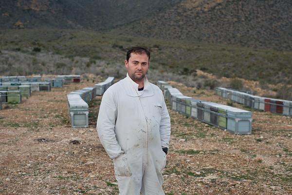 Mortandad de abejas en Murcia