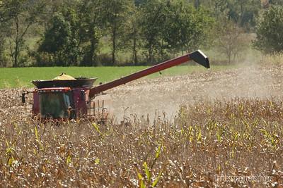 Combine in Corn