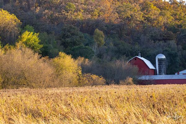 Golden Hour on the Farm