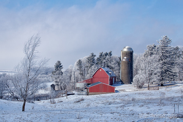 Red Barn Frosty Day