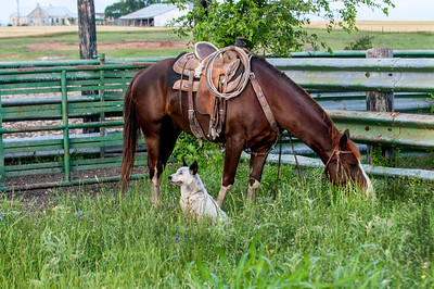 Farm Credit Idea Share 2014