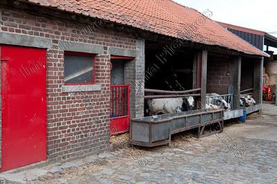 farm,boerderij,ferme,Voerstreek,Fouron,Belgium,België,Belgique