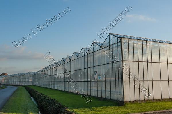 Greenhouse serre